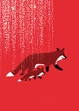 Red fox illustration postcard